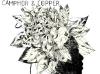 Camphor & Copper (label : No Format!)