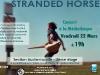 Stranded Horse à Gérardmer